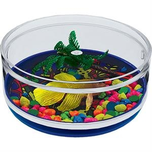 Like A Fish - Compartment Coaster Caddy, Beach Theme
