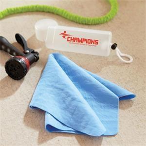 Detailer Super Absorbent Towel
