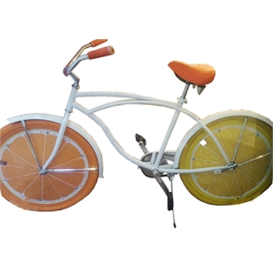 Citrus beach cruiser