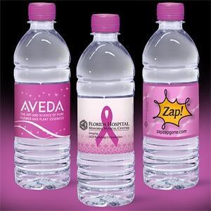 16.9 oz Clear Bottle with Fuschia Flat Cap