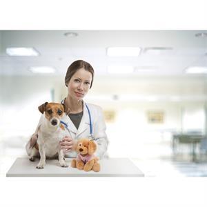 Gund® Plush Dog - Riley