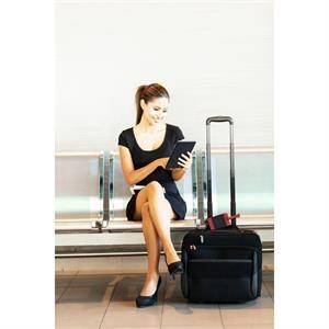 Lamis Two-Tone Luggage Tag