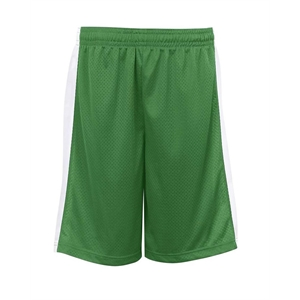 Alleson Athletic Youth Pro Mesh Challenger Shorts