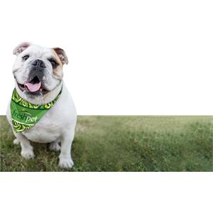 Full-Color Dog Bandana