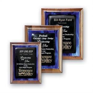 Metallic Fusion Award