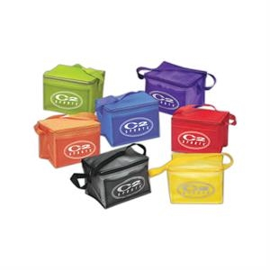 Clear Pvc Economy Insulated 6 Pack Cooler With Top Zippered Closure