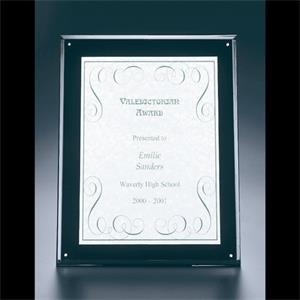 "Blank. Clear Acrylic Entrapment Wall Plaque With Acrylic Backing, 10 1/2"" X 13"""