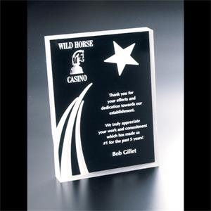 Twilight - Blank Goods. Clear Acrylic Portrait Award With Sandblasted Shooting Star Design