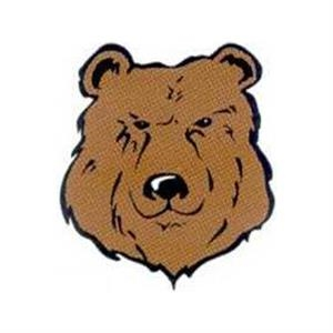 "Temporary Tattoos (tm) - Stock, Non Toxic, Hypoallergenic 2"" X 2"" Bear Head Tattoo Is Fda Certified"