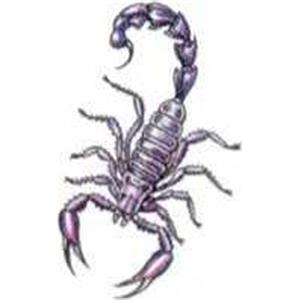 "Temporary Tattoos (tm) - Stock, Non Toxic, Hypoallergenic 2"" X 2"" Scorpion Tattoo Is Fda Certified"
