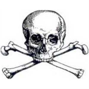 Temporary Tattoos (tm) - Stock, Non Toxic, Hypoallergenic Large Skull And Bones Tattoo Is Fda Certified