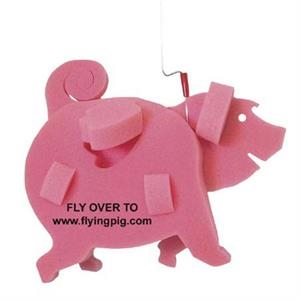 Flying Pig on a Leash