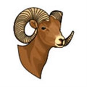 Ram Head, Stock Tattoo Designs