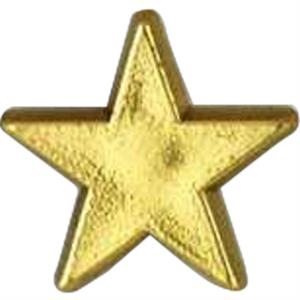 Star-shaped Plastic Lapel Pin With Clutch Back
