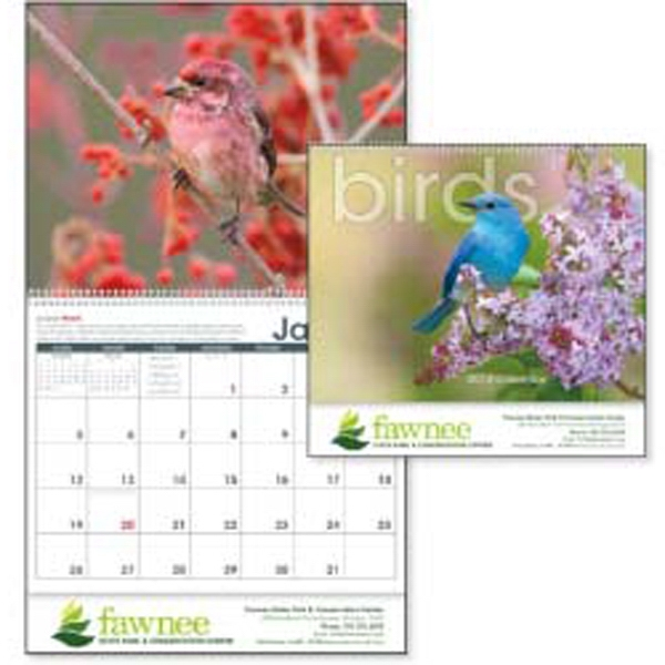 2015 Calendar With Up-close Shots Of North America's Most Vibrant, Colorful Birds Photo