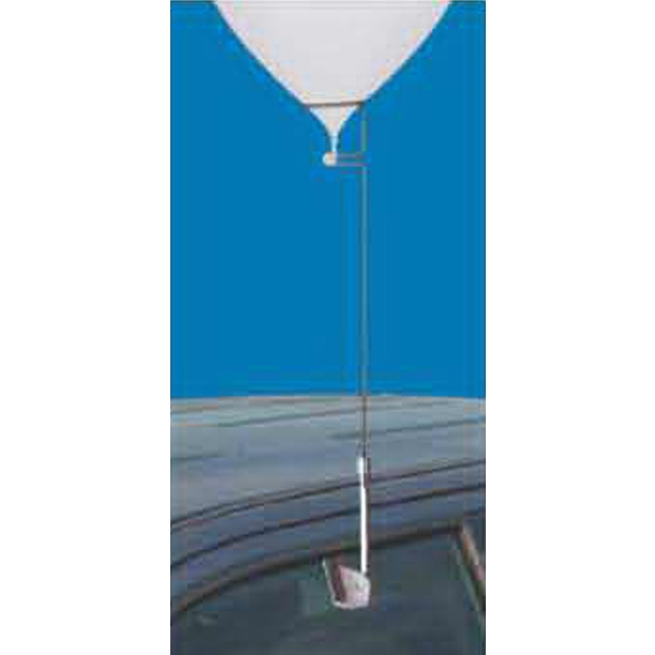 Car Window Adapter For Latex Balloons. Balloons And Balloon Holders Sold Separately Photo