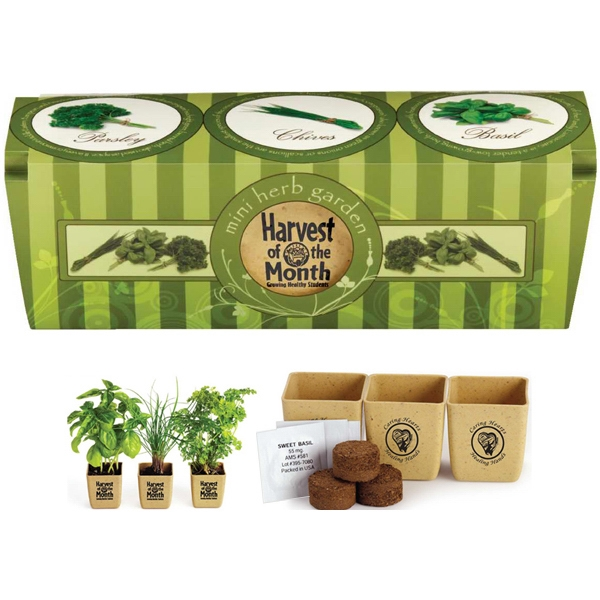 Growpot - Herb Garden Set Made From Reclaimed Organic Materials Fully Biodegradable Fiber Pot Photo