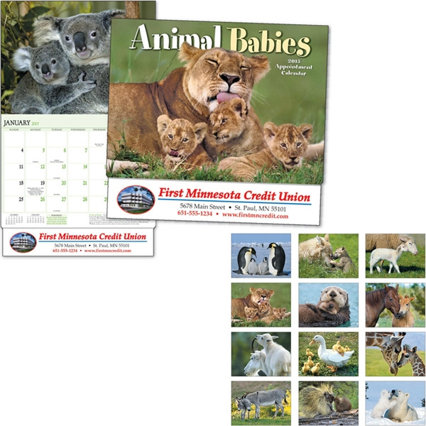 Animal Babies - Thirteen Month Appointment Calendar With Images Of A Koala, Cubs, A Fawn, And More Photo