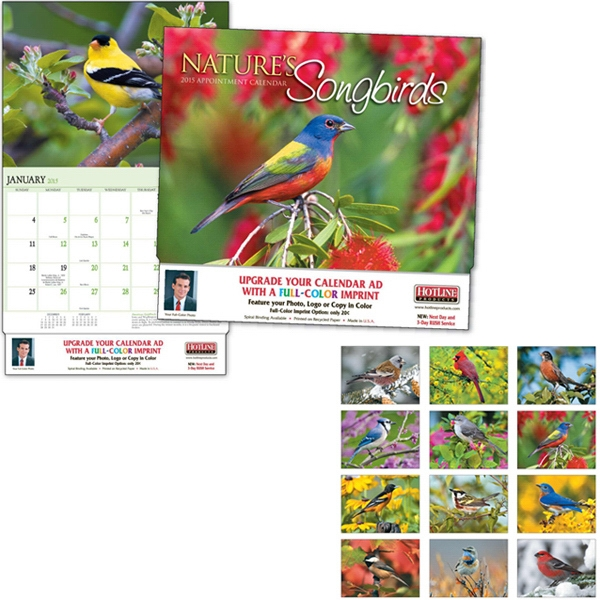 Nature's Songbirds - Thirteen Month Appointment Calendar With A Close-up View Of Colorful Birds Photo
