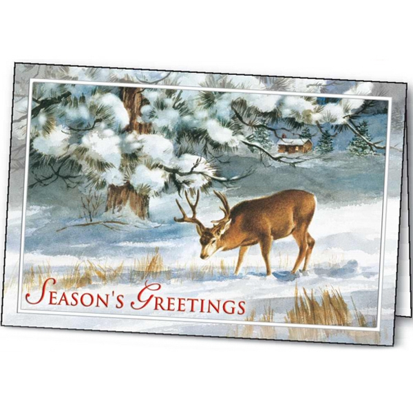 Winter's Solitude - Holiday Greeting Card Photo