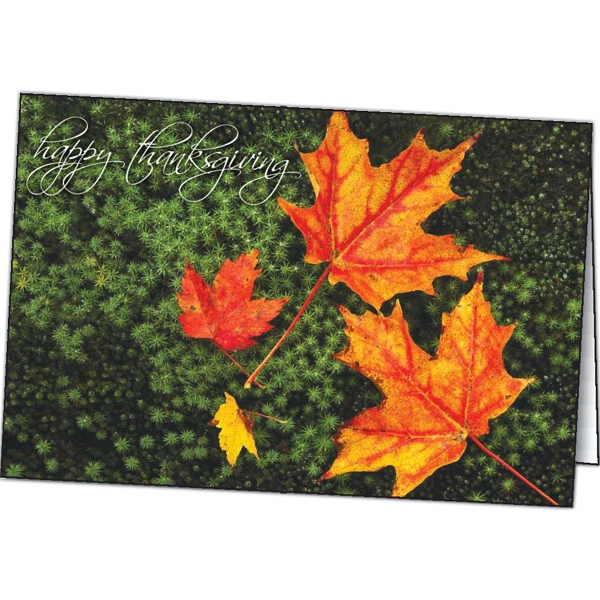 Thanksgiving Color - Special Occasion Card Photo