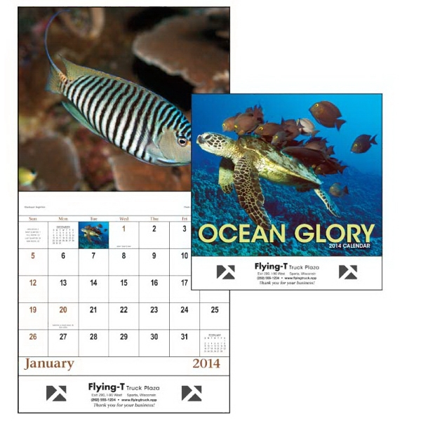 Stapled, 13-month 2015 Calendar With Spectacular Sea Life Photos Photo