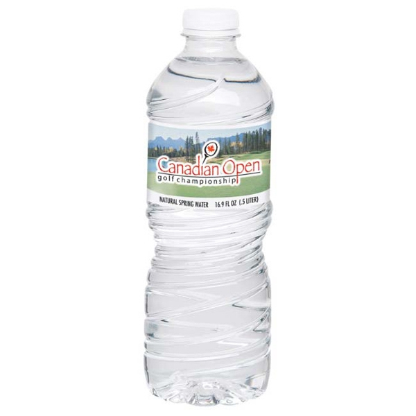16.9 Oz. Twist Cap Bottled Water Photo