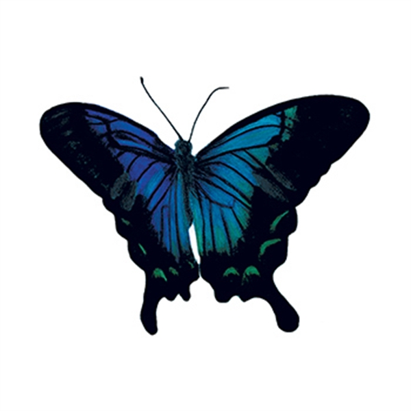 Sketched Blue Butterfly Temporary Tattoo - Sketched Blue Butterfly Temporary Tattoo