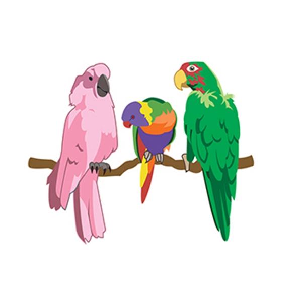 Parrots Temporary Tattoo - Parrots Temporary Tattoo