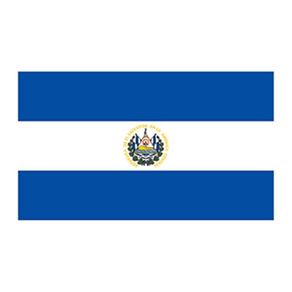 Flag of El Salvador Temporary Tattoo - Flag of El Salvador Temporary Tattoo