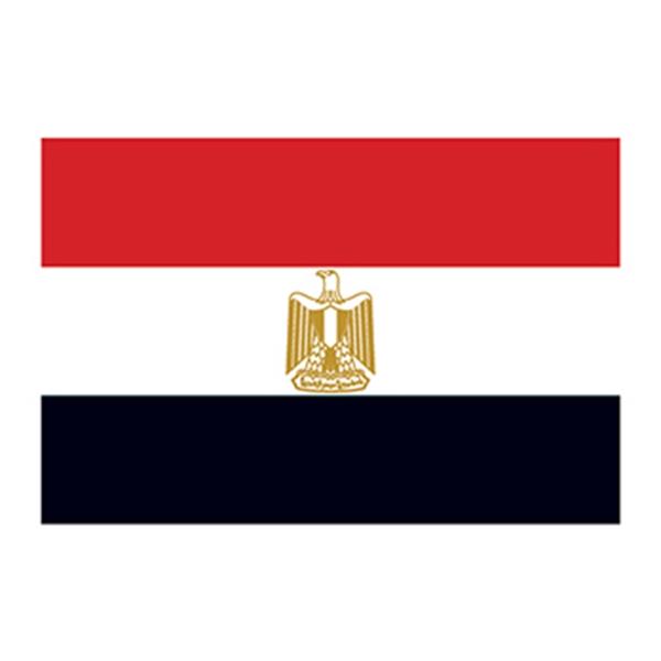 Flag of Egypt Temporary Tattoo - Flag of Egypt Temporary Tattoo