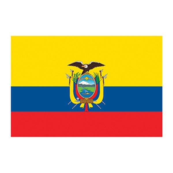Flag of Ecuador Temporary Tattoo - Flag of Ecuador Temporary Tattoo