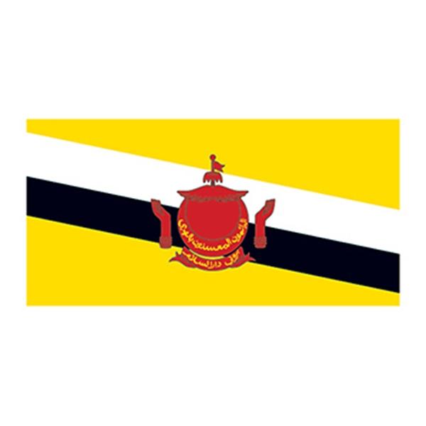 Flag of Brunei Temporary Tattoo - Flag of Brunei Temporary Tattoo