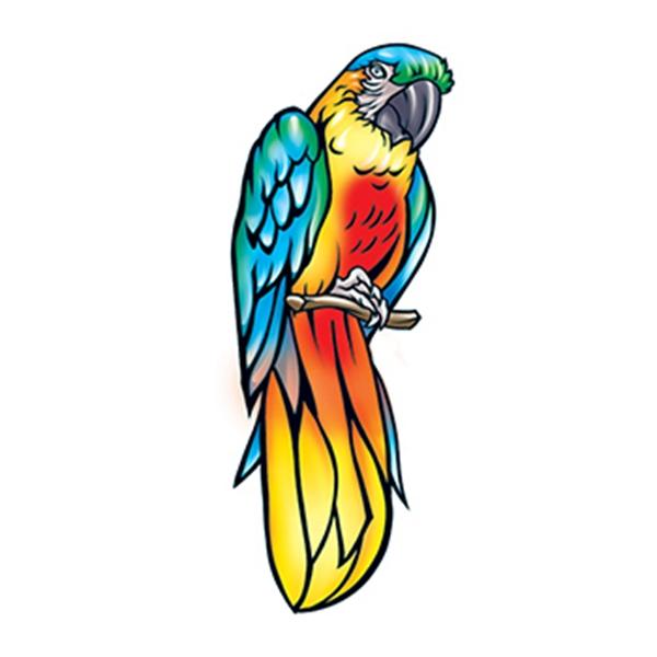 Parrot Temporary Tattoo - Parrot Temporary Tattoo