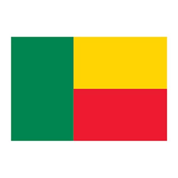 Flag of Benin Temporary Tattoo - Flag of Benin Temporary Tattoo