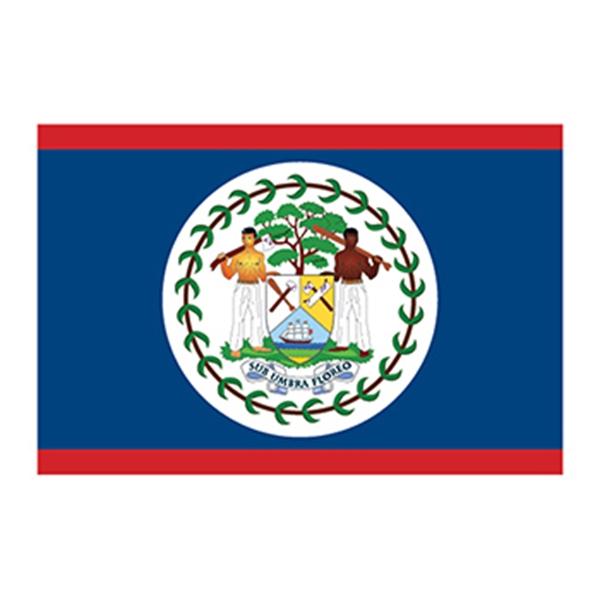 Flag of Belize Temporary Tattoo - Flag of Belize Temporary Tattoo