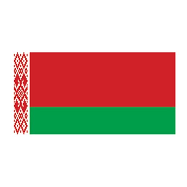 Flag of Belarus Temporary Tattoo - Flag of Belarus Temporary Tattoo