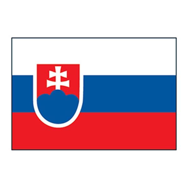 Slovakia Flag Temporary Tattoo - Slovakia Flag Temporary Tattoo