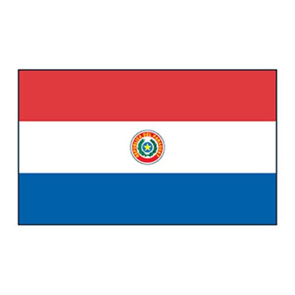 Paraguay Flag Temporary Tattoo - Paraguay Flag Temporary Tattoo