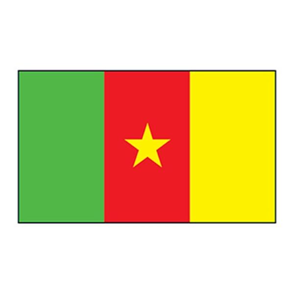 Cameroon Flag Temporary Tattoo - Cameroon Flag Temporary Tattoo