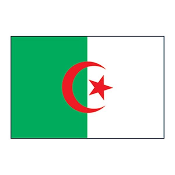 Algeria Flag Temporary Tattoo