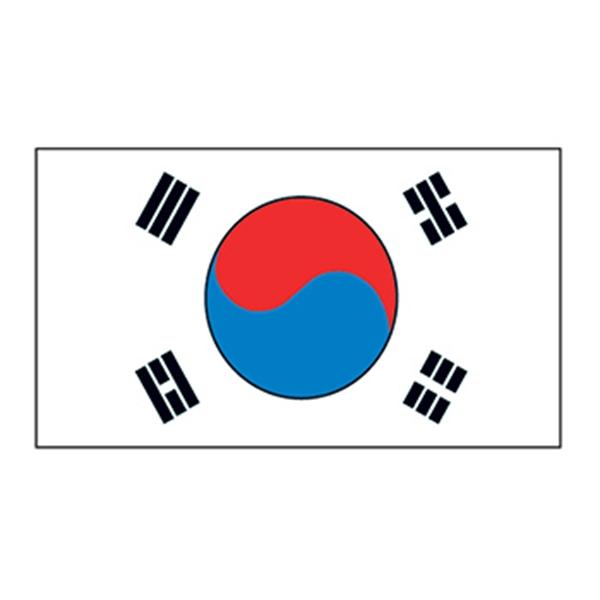 Korea Flag Temporary Tattoo