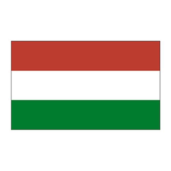 Hungary Flag Temporary Tattoo - Hungary Flag Temporary Tattoo