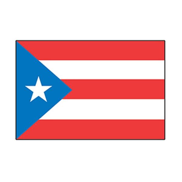 Puerto Rico Flag Temporary Tattoo - Puerto Rico Flag Temporary Tattoo