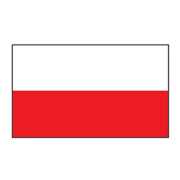 Poland Flag Temporary Tattoo - Poland Flag Temporary Tattoo