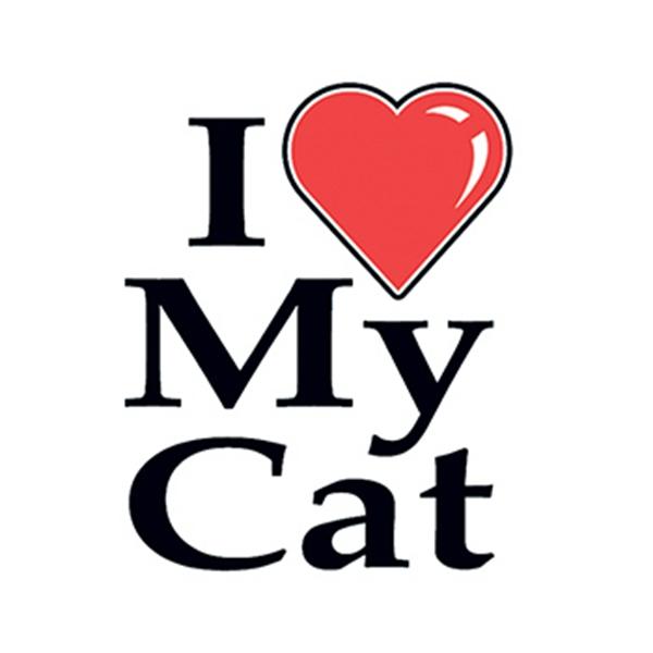 I Heart My Cat Temporary Tattoo - I Heart My Cat Temporary Tattoo
