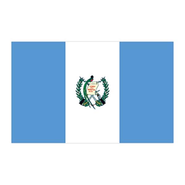 Flag of Guatemala Temporary Tattoo - Flag of Guatemala Temporary Tattoo