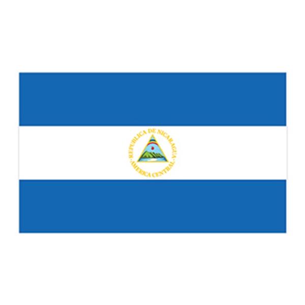 Flag of Nicaragua Temporary Tattoo - Flag of Nicaragua Temporary Tattoo