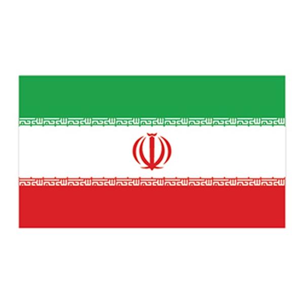 Flag of Iran Temporary Tattoo - Flag of Iran Temporary Tattoo