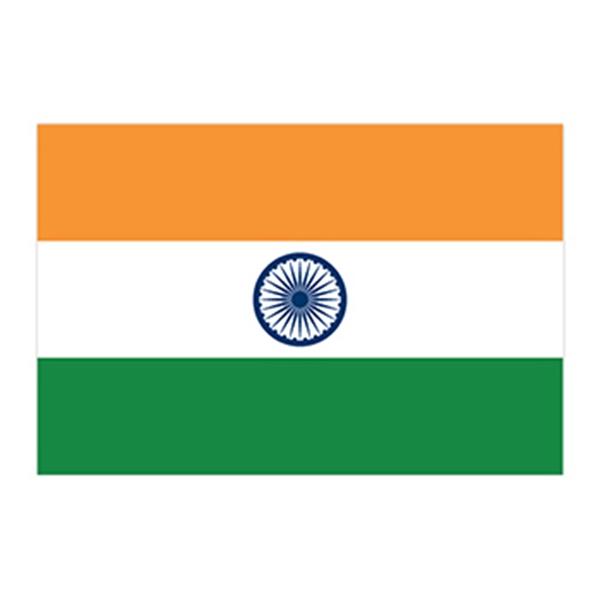 Flag of India Temporary Tattoo - Flag of India Temporary Tattoo